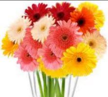 ดอกไม้สด